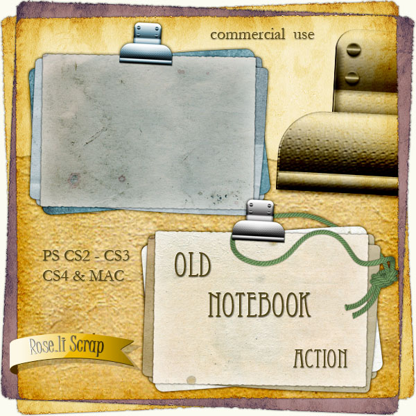 Action - Old Notebook by Rose.li