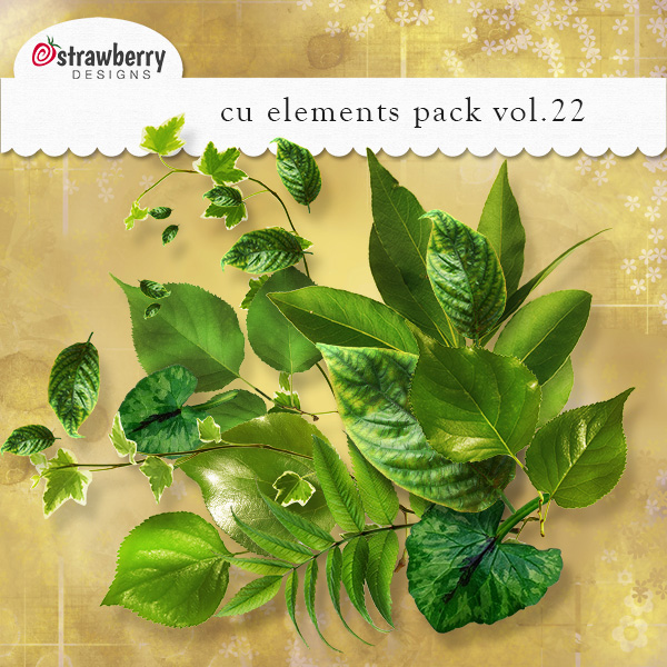 Leaves Element Mix Vol 22 by Strawberry Designs